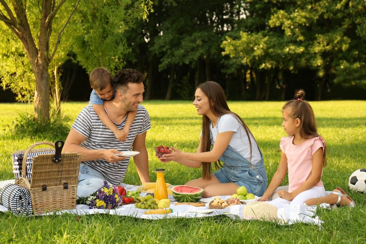 family summer activities- family having pinic together